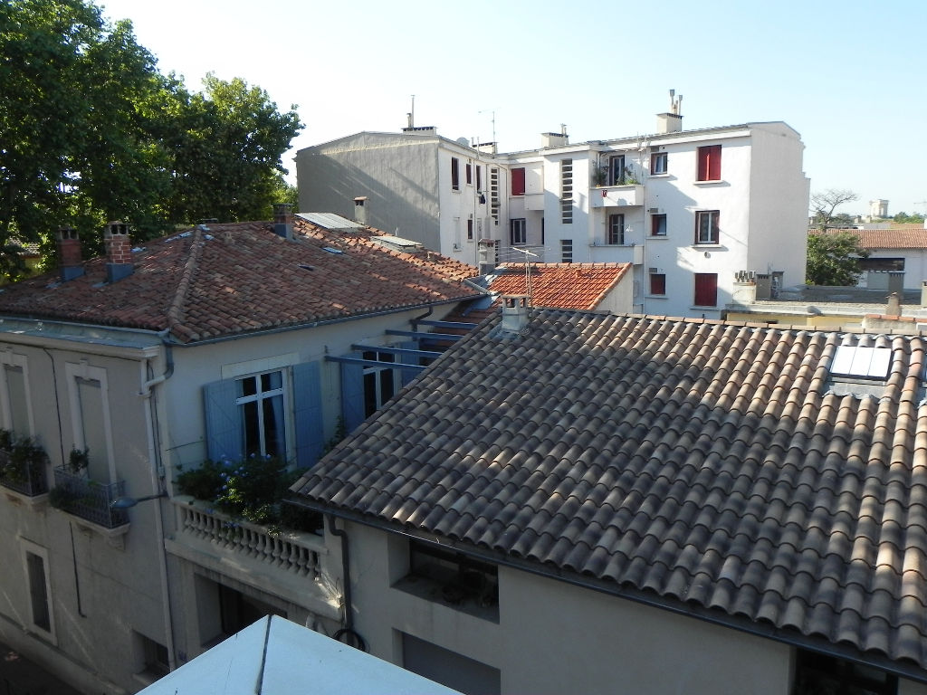 appartement-montpellier-1-piece-s-28-33-m2